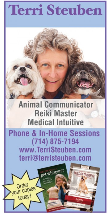 Terri Steuben animal communicator