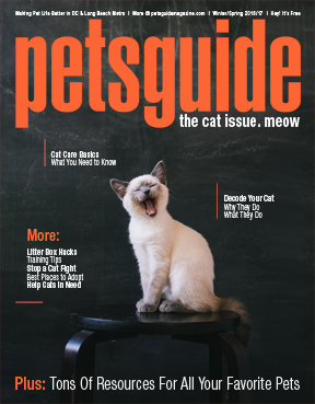 pg16cover