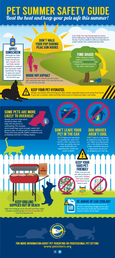 pet-summer-safety-guide-infographic