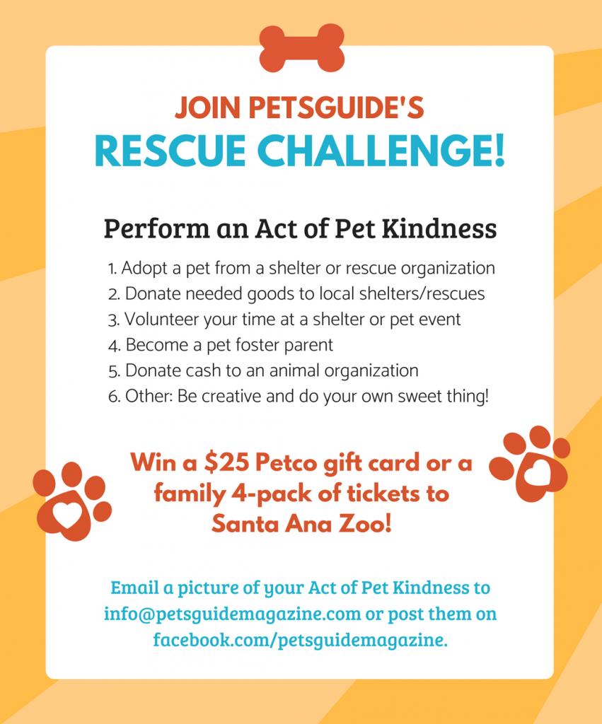 Rescue Challenge! (3)