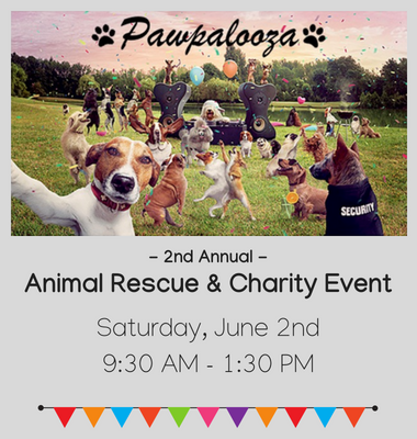 Animal Rescue & Charity Event (2)