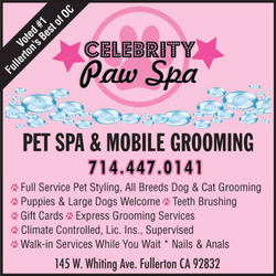 right_celebritypawspa (1)